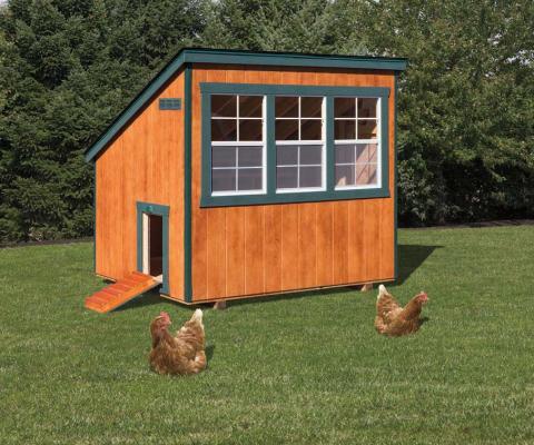 6 x 8 Chicken Coop